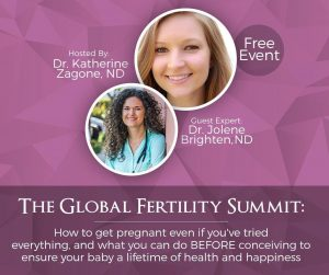 Global Fertility Summit